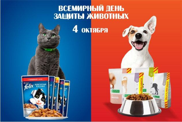 «Всемирный день защиты животных»