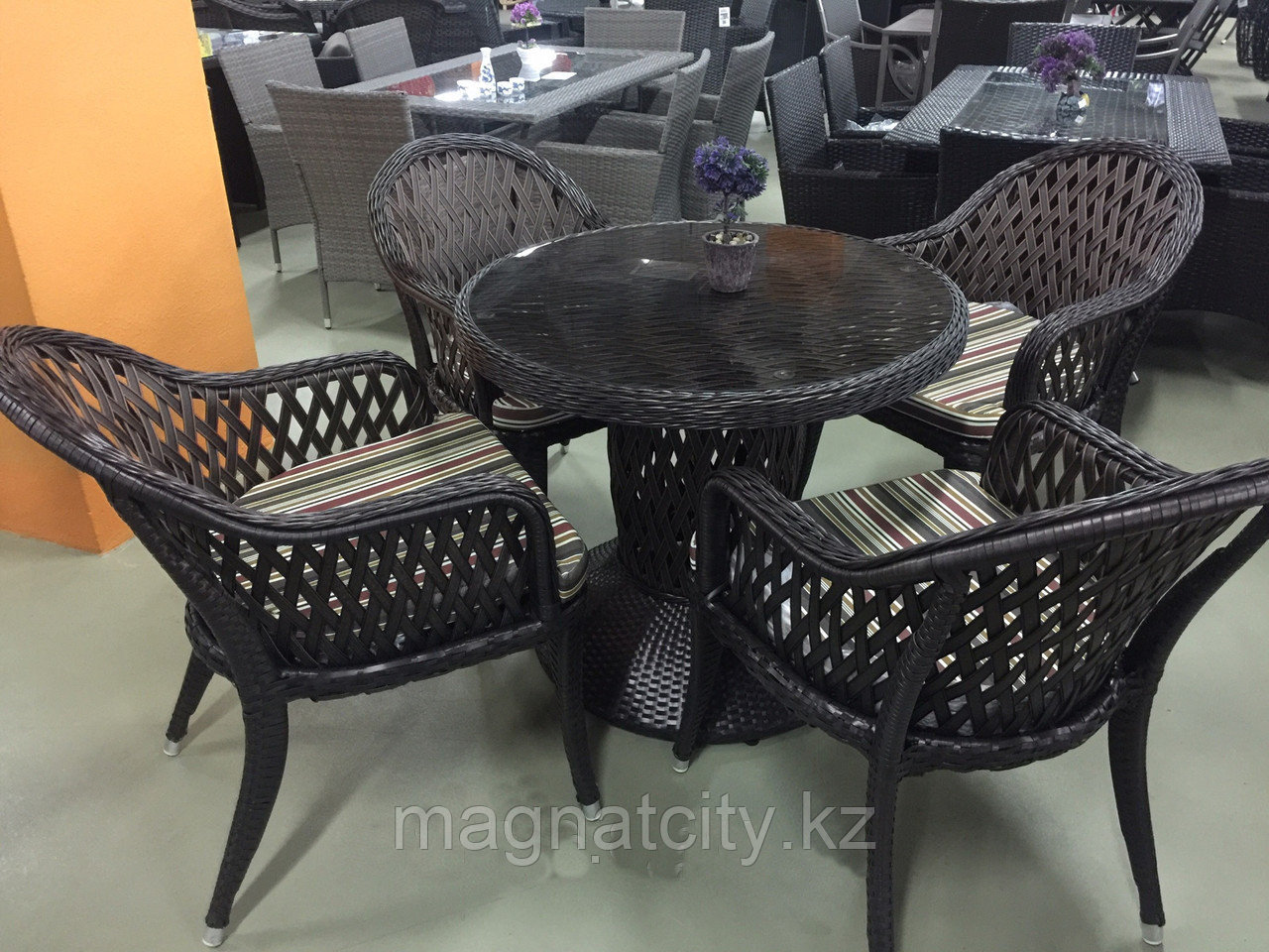 Стол 4 кресла БАУХИНИЯ
