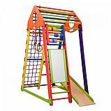 Детский спортивный комплекс BambinoWood Color Plus , фото 6