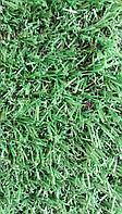 Искусственный газон, фото 1