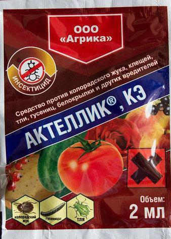Инсектицид Актеллик, КЭ 2мл, фото 2