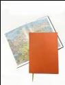 Ежедневник Lediberg недатированный, формат A5 Цвет: оранжевый