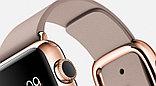 Apple Watch Edition, 38 mm. / Gold Modern Buckle Rose Grey, фото 8