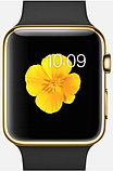 Apple Watch Edition, 38 mm. / Gold Sport Black, фото 2