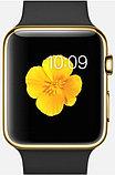 Apple Watch Edition, 38 mm. / Gold Sport Black, фото 2