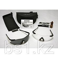 ESS ICE 2X kit