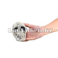 Череп в сетке украшение на Хэллоуин (Halloween) 6 шт большие