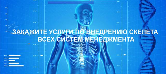 Закажите услуги по внедрению скелета всех систем менеджмента