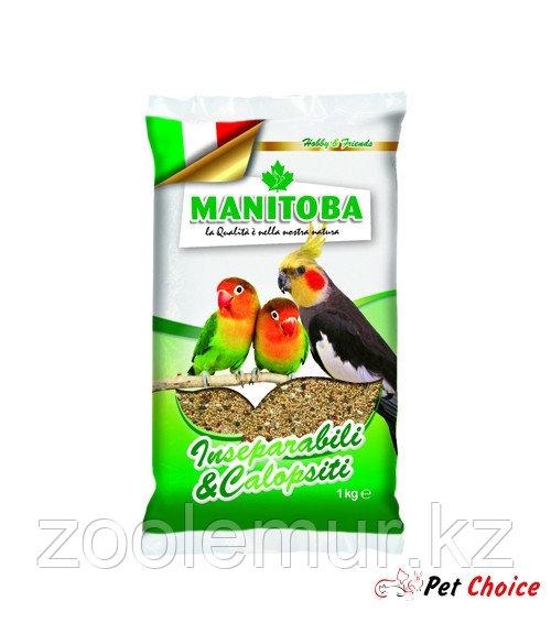Manitoba зерновая смесь для средних попугаев 1 кг.