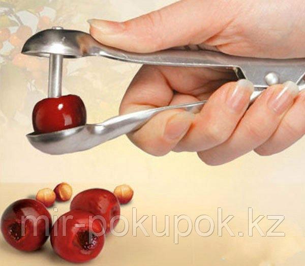 Приспособление для удаления косточек из вишни и оливок, Алматы