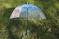 Зонтик-трость «Прозрачный купол» №3, Алматы