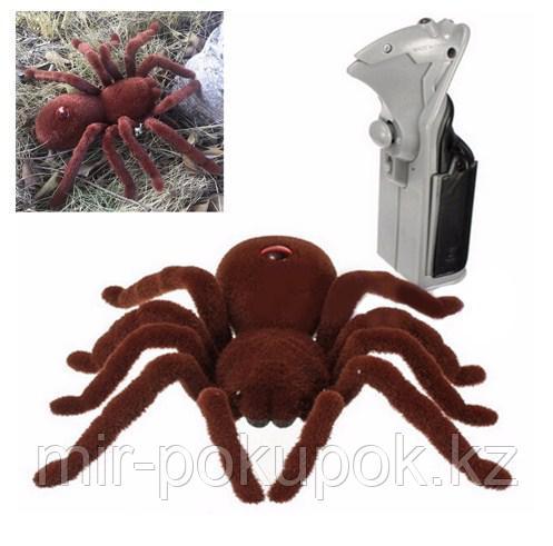 Радиоуправляемый паук