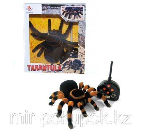 Паук Тарантул радиоупрявляемая игрушка