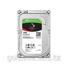 1 ТБ Жесткий диск Seagate 5900 IronWolf [ST1000VN002]