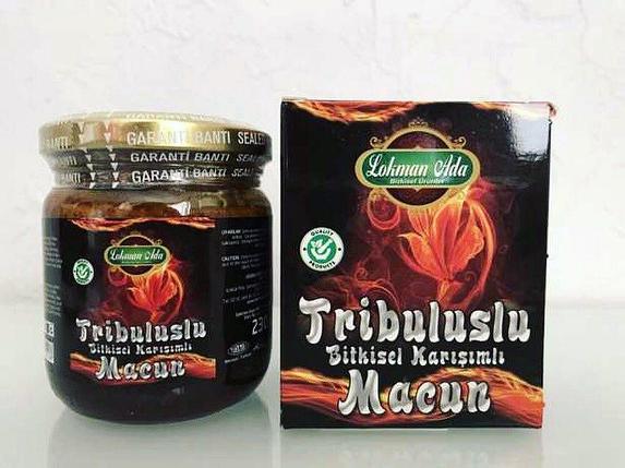 Эпимедиумная паста Tribuluslu Macun Lokman Ada ( 230 g), фото 2