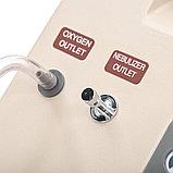 """Концентратор кислорода """"Armed"""" 7F-10L (с выходом для ингаляции), фото 7"""