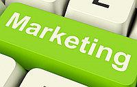 Дипломная работа по маркетингу