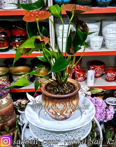 Керамический горшок для цветов (без поддона). Объем: 1л, фото 2