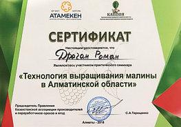 """Сертификат о прохождении теоретического курса """"Технология выращивания малины в Алматинской области"""""""