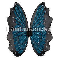 Крылья бабочки голубые