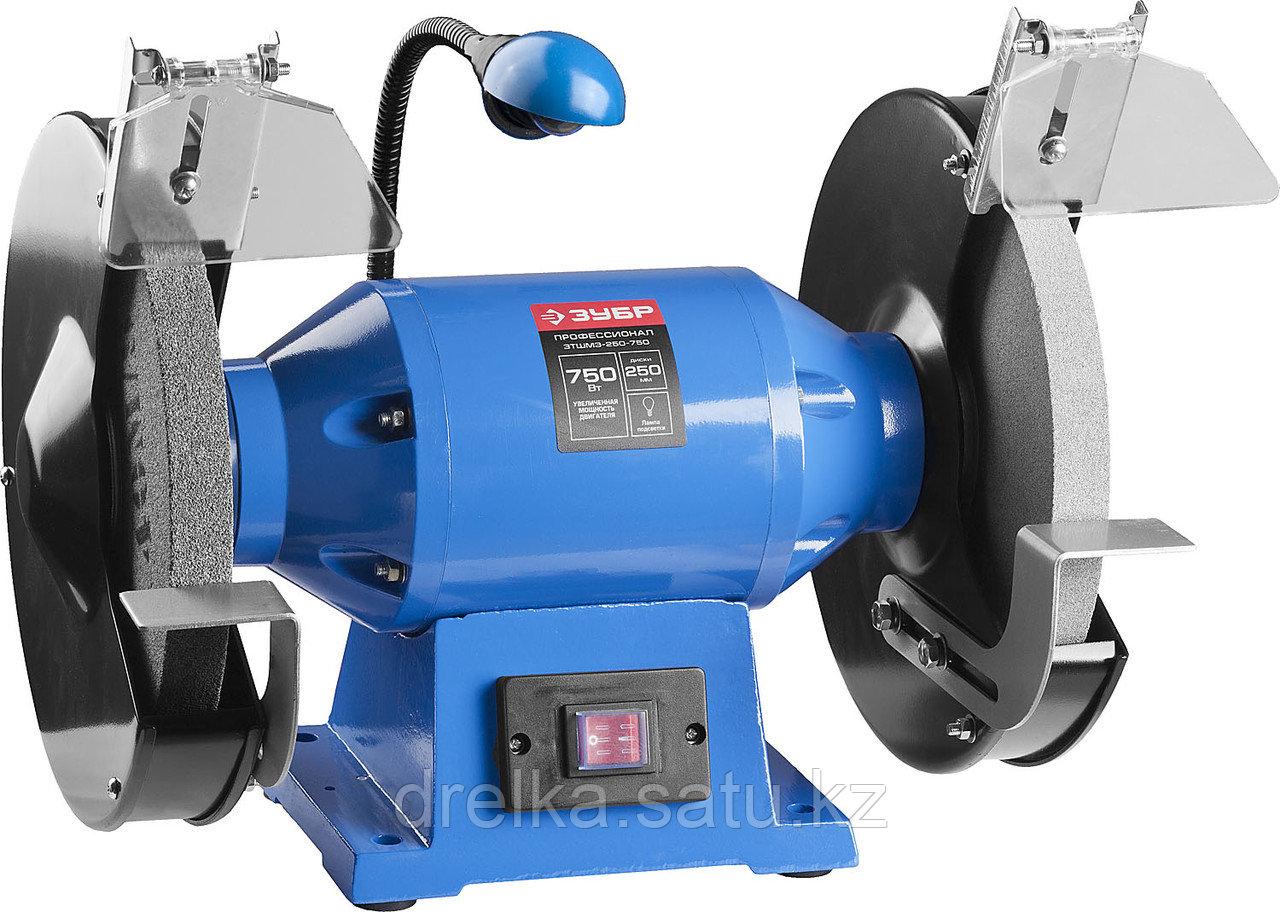 Станок точильный ЗУБР ЗТШМЭ-250-750, ЭКСПЕРТ двойной, лампа подсветки, диск 250 х 25 х 32 мм, 750 Вт.