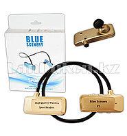 Блютуз наушники Bluetooth Blue Scenery sport F5 золотые