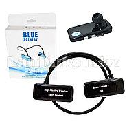 Блютуз наушники Bluetooth Blue Scenery sport F5 черные