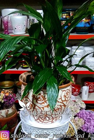 Керамический горшок для цветов (без поддона). Объем: 5л, фото 2