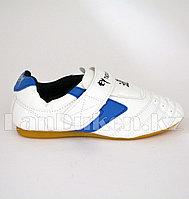 Обувь для тхэквондо (соги/степки) Yeienburl на липучке размеры 27-37 сине-белый 32