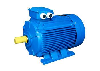 Электродвигатель 750 об/мин 30 кВт