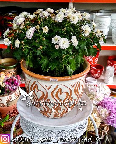 Керамический горшок для цветов (без поддона). Объем: 3л, фото 2