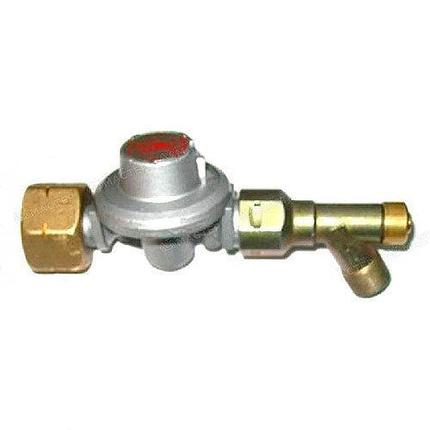 Газовый редуктор для РЕСАНТА ТГП-30000 BG, фото 2