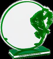 Награда по хоккею