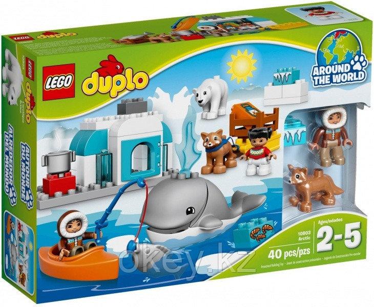 LEGO Duplo: Вокруг света: Арктика 10803