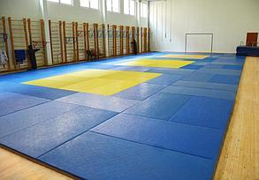 """Татами для дзюдо """"Эконом"""" 160 кг/м3 1х2 метра (открытое дно), фото 2"""