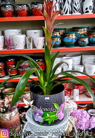 """Пластиковый горшок со скрытым поддоном """"Орхидеи"""". Цвет: Черный. Объем: 5.1л, фото 2"""
