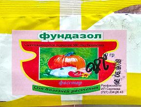 Фундазол – фунгицидный препарат защиты растений. 10гр.