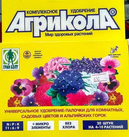 Агрикола. Комплексное удобрение-палочки для комнатных, садовых цветов. 20 штук по 2г. Грин Бэлт., фото 2