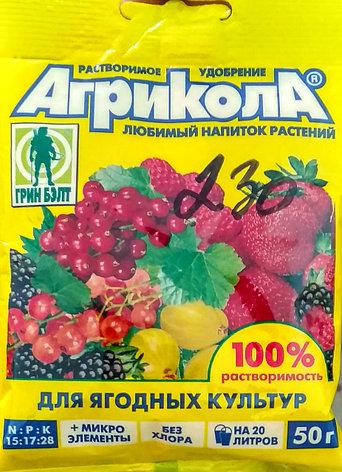 Агрикола. Растворимое удобрение для ягодных культур. 50г. Грин Бэлт., фото 2