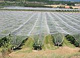 Антиградовая защитная сетка для садов и виноградников, фото 2