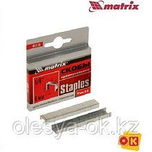 Скобы, 6 мм, для мебельного степлера, тип 53, 1000 шт.// MATRIX