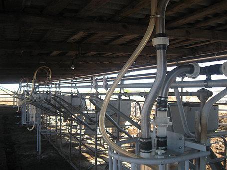 Доильная установка УДС-3Б, на 200 голов, фото 2