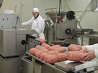 Минизавод для переработки мяса на 600 кг/смену