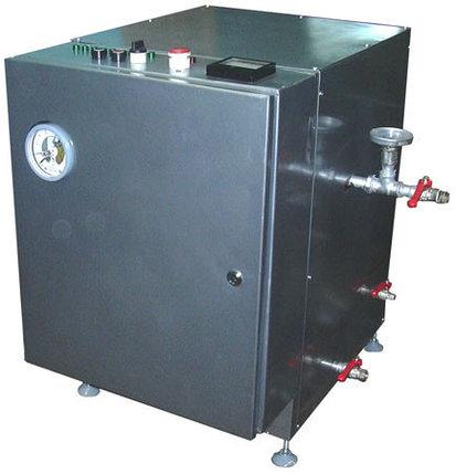Парогенератор (регулируемый) ИПКС-129-100Р, фото 2