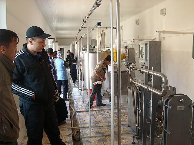 Минизавод для переработки молока на 2000 л/сутки
