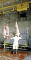 Убойный цех 100 КРС/100 свиней в смену