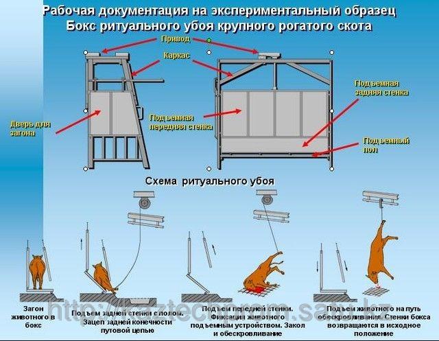 Комплект оборудования по убою скота