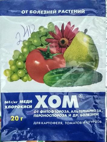 Средство от болезней растений ХОМ, СП 20 г, фото 2