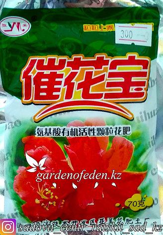 Кислородное удобрение для цветов. 70г., фото 2