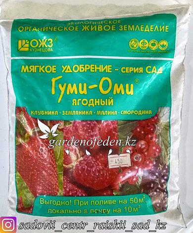 Удобрение Гуми-Оми Ягодный для земляники, клубники, малины, смородины 0,7 кг, фото 2